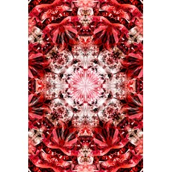 Tapis Crystal Fire 200 x 300 cm