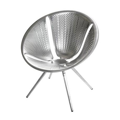 Diatom