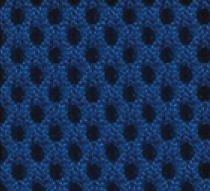 Dazzing Blue