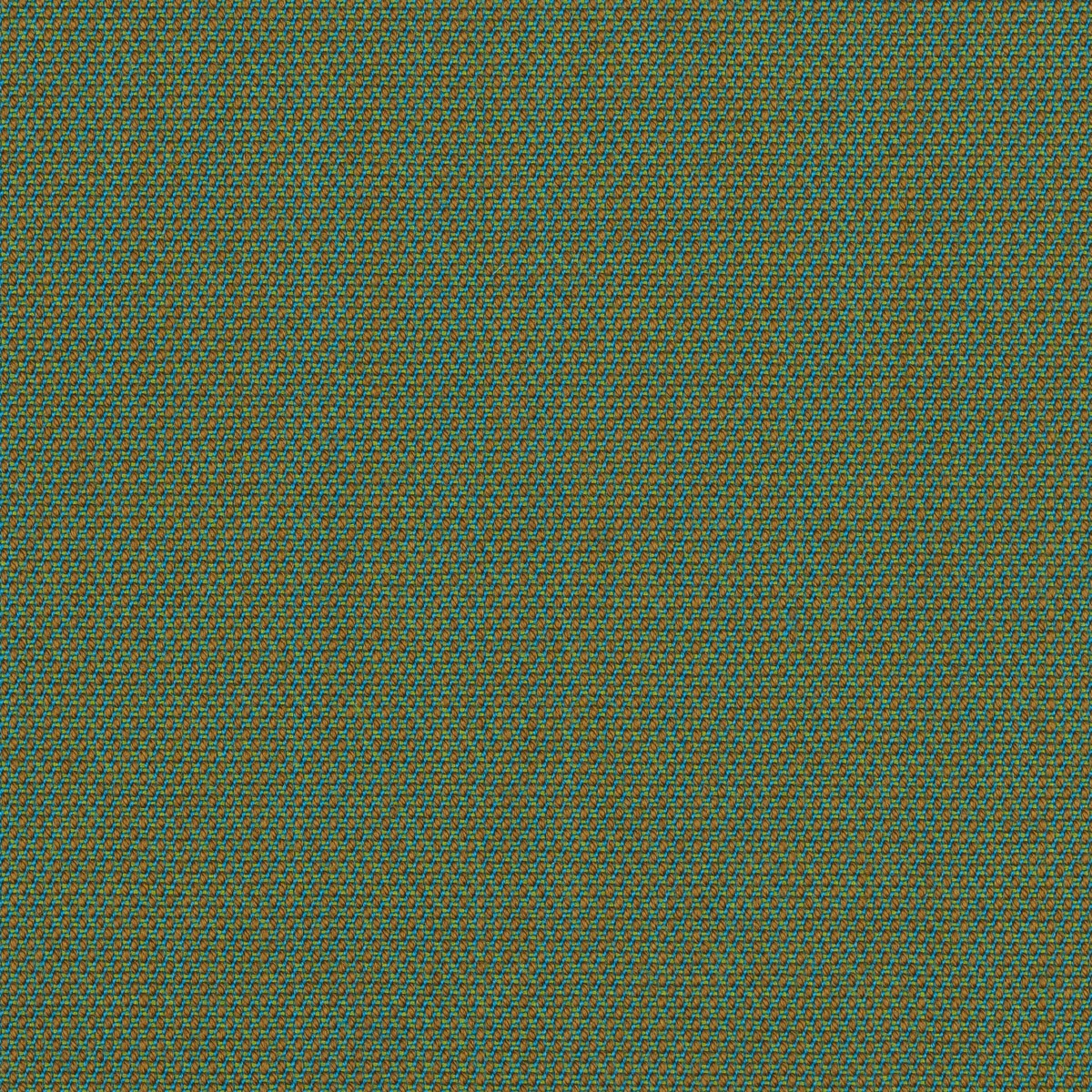 STEELCUT TRIO2 13F841